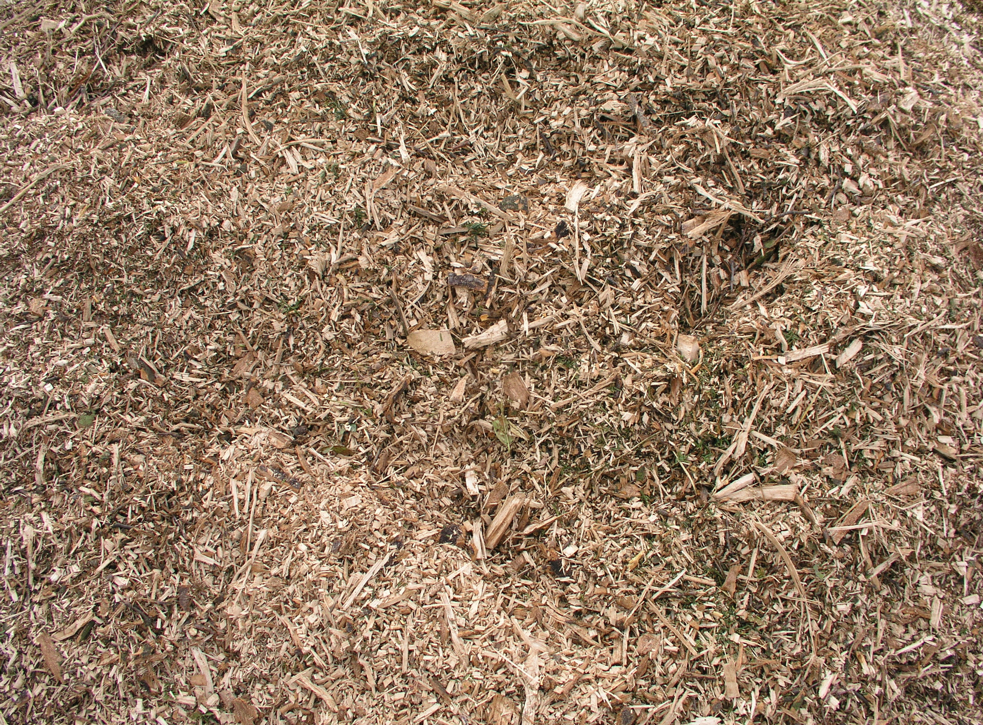 fine_wood_chips_4210097